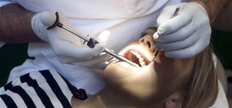 Noodkreet: tandarts gezocht voor Rotterdam, West-Brabant en Zeeland, laat meer studenten toe