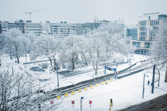 sneeuwbeelden in Gent