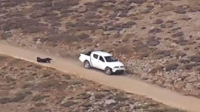 Oostenrijk opent onderzoek naar blauwhelmen na dodelijk incident in Syrisch grensgebied