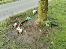 Monument van verkeersdode vernield in Wageningen: bloemen, planten en beelden gesloopt