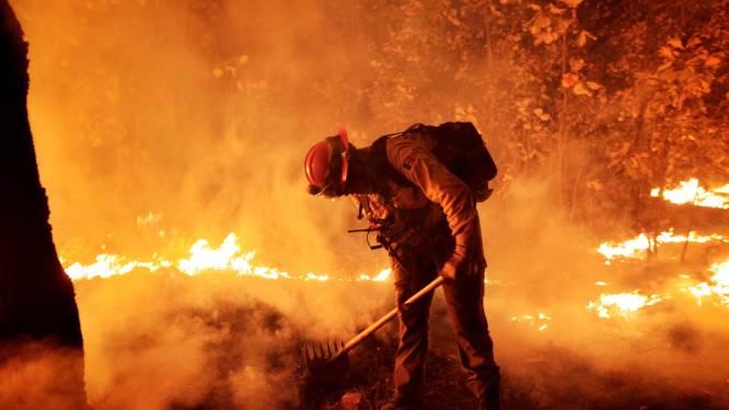 Bosbranden en 'ergste droogte in 30 jaar' teisteren Mexico