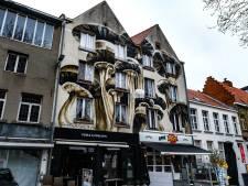 """Gigantische paddenstoelen springen uit de grond op Sint-Jansvliet: """"Een klein maar groots bestaan onder ons"""""""