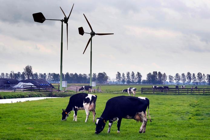 De turbines staan al sinds januari op een boerenerf aan het Graafland. Het college van b en we gaf daarvoor groen licht, maar had iets in de regelgeving over het hoofd gezien.