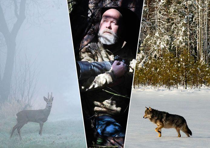 Henkjan Kievit maakt door de coronacrisis nu foto's van wilde reeën in plaats van wolven in Wit-Rusland.