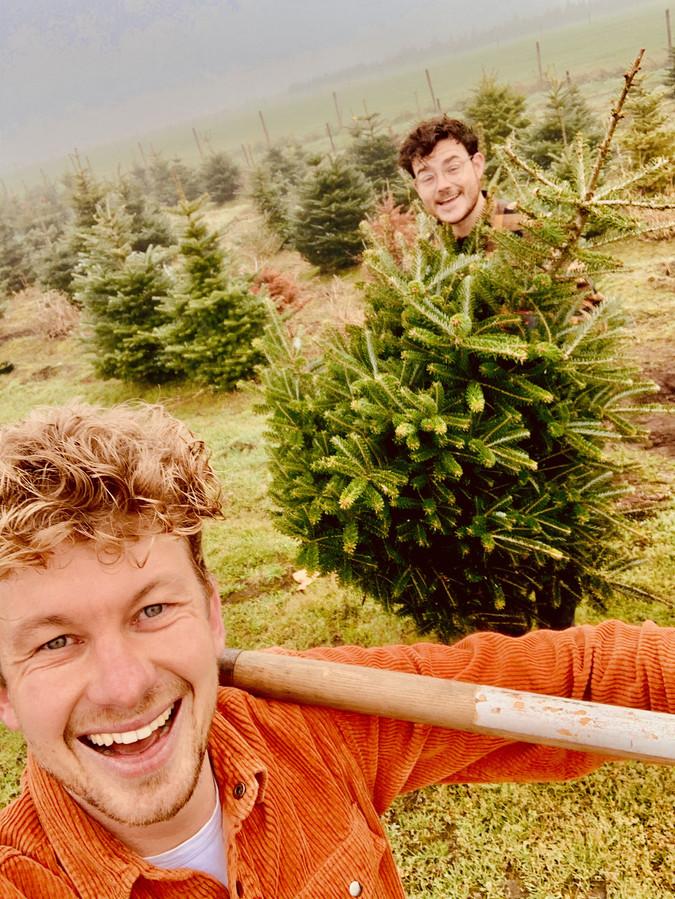 Thibaud van der Steen (links) en Frank Haagen aan het werk in het kerstbomenbos.