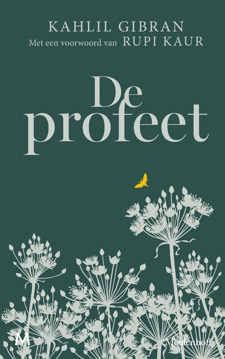 Illustratie Geertje Aalders, ontwerp Pinta Grafische Producties. Meulenhoff, 2020. Beeld Meulenhoff