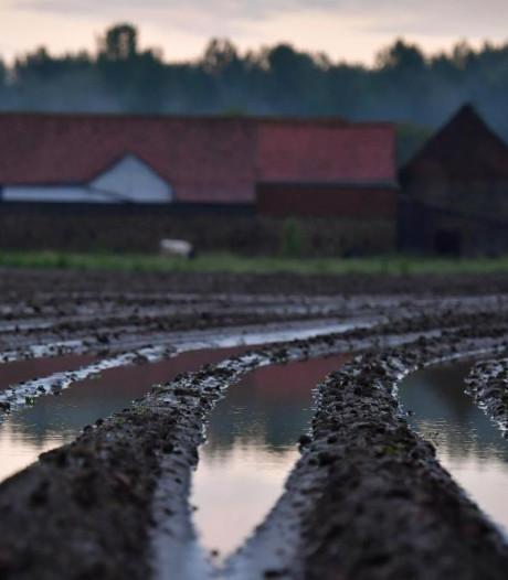 Les fortes pluies des derniers jours ont suffi à pallier la sécheresse en Wallonie