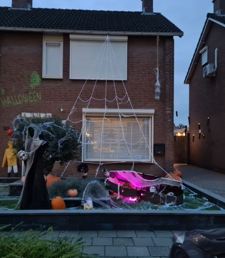 Huiveren met Halloween: 'Tof als mensen schrikken van jouw creatie'