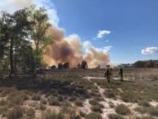 Verhoogd risico op natuurbrand Oost-Nederland: natuurbeheerders en handhavers controleren extra