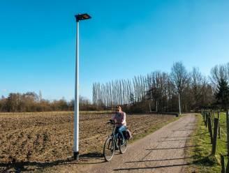 Gemeente plaatst nachtdiervriendelijke verlichting in Sneppenbosweg