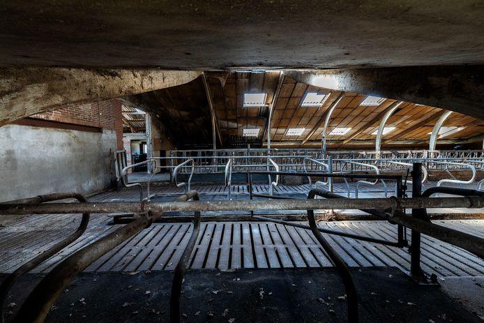 Deze boerderij vlakbij kwetsbare natuur werd door de provincie gekocht met geld voor natuurnherstel. Hier loeien al twee jaar geen koeien meer. Toch wordt de stikstof opnieuw verkocht door de provincie. © Kees Martens/DCI Media