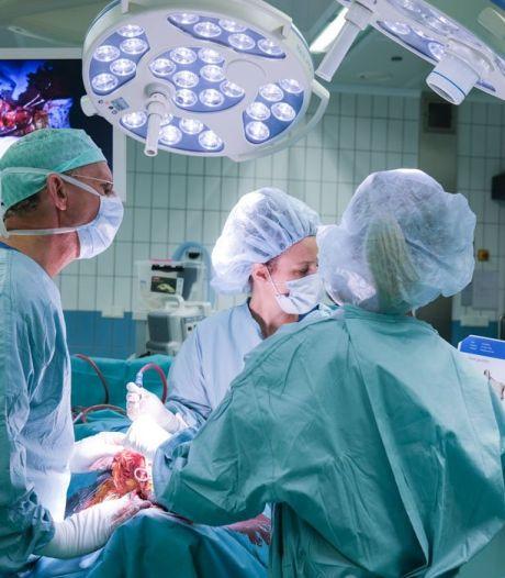Bijzondere operatie in Utrecht: hond Swiebertje krijgt titanium elleboog, waarmee voorpootje wordt gered