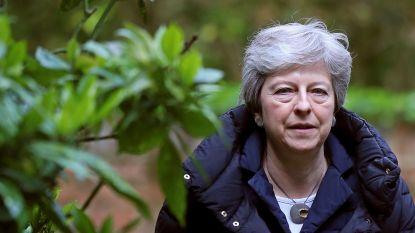 Geen tijd meer om brexit nog te regelen: Britten op 23 mei naar de stembus voor Europese verkiezingen