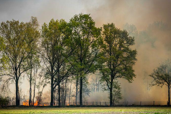 Er woedt een zeer grote natuurbrand nabij het Brabantse Deurne. De brandweer is massaal uitgerukt en heeft een NL-Alert verzonden.