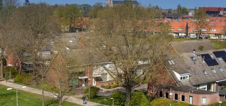 De zon schijnt weer in de Elzenstraat in Kampen: de veelbesproken moeraseiken  zijn gekapt