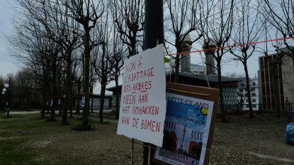 Buurtbewoners voeren ondanks coronavirus actie tegen kap van bomen aan Rijksadministratief Centrum