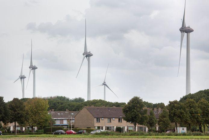 De windmolens bij Geervliet. Ineens hadden de bewoners ze in hun achtertuin.