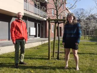 """Minder armoede door beter te informeren over huurpremie: """"Voorbeeld van Antwerpen volgen"""""""