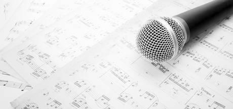 Nieuw talent voor groot publiek op Veerse dag