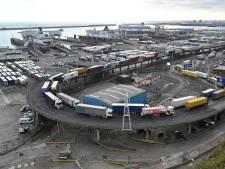 Brexit: le Royaume-Uni retarde l'introduction des contrôles douaniers pour l'UE