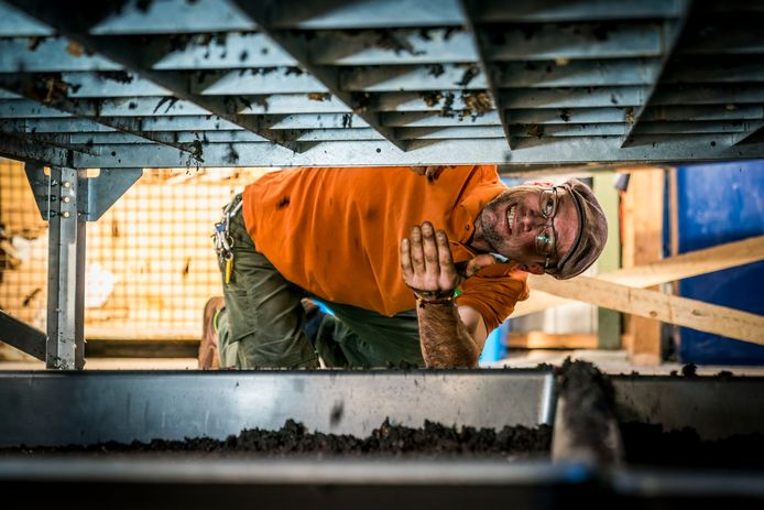 Edgar van Groningen: ,,De wormenpoep zakt aan de onderkant van de bak door een soort metalen schaaf. Na dit proces drogen wij de rijpe compost en dan is het klaar voor gebruik.''