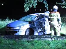 Auto slaat over de kop en eindigt tegen boom in Woudenberg: inzittende gewond
