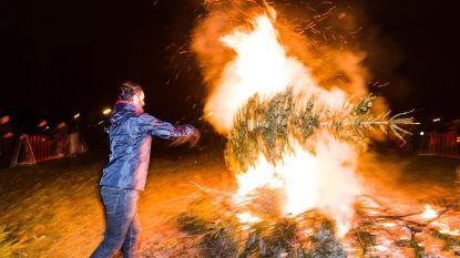 Wijkcomité 't Kasseitje brengt buurtbewoners naar kerstboomverbranding met de huifkar