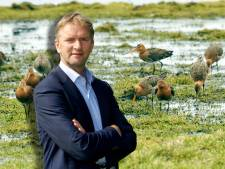 Help! De weidevogel verdwijnt. Kamerlid uit Dalfsen komt met reddingsplan: 'Slechtste jaar ooit'