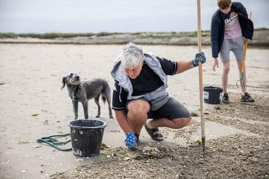 De Duitse Uschi met haar hond Emmi helpt al vijf jaar achtereen mee. Op de achtergrond Djeadan Kostense.