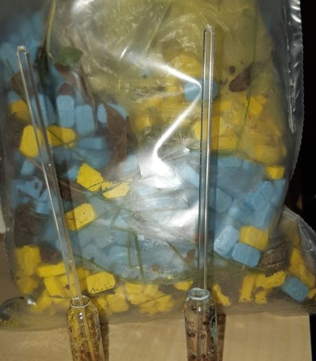 Zak met xtc-pillen gevonden in bosjes Waspik