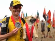 Zwerfhond volgt duurloper 169 km lang en verovert hart nieuw baasje