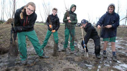"""Leerlingen Tuinbouwschool Melle planten in Rieme bij Evergem: """"Niet alleen klimaatbrossen, wij planten ook bossen!"""""""