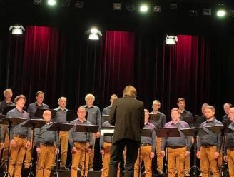 Tebasco viert 60ste verjaardag met internationaal festival op 6 plaatsen in Oudenaarde