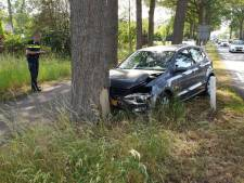 Automobilist botst tegen boom na uitwijkmanoeuvre