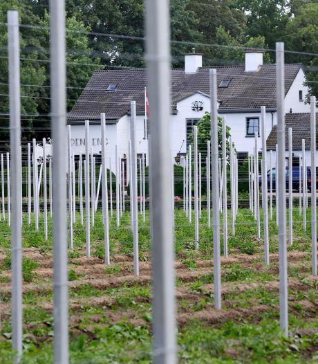 Buren steekt nek uit voor boomtelers met het vergunningsvrij maken van stokken