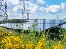 Aandelen Oosterhouts zonnepark De Grift doen het beter dan verwacht