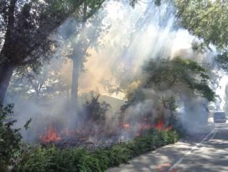 Brandweer moest laatste dagen al vijf keer uitrukken voor uitslaande brand aan sporthal Driebeek