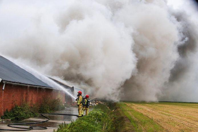 Grote stalbrand in Heusden