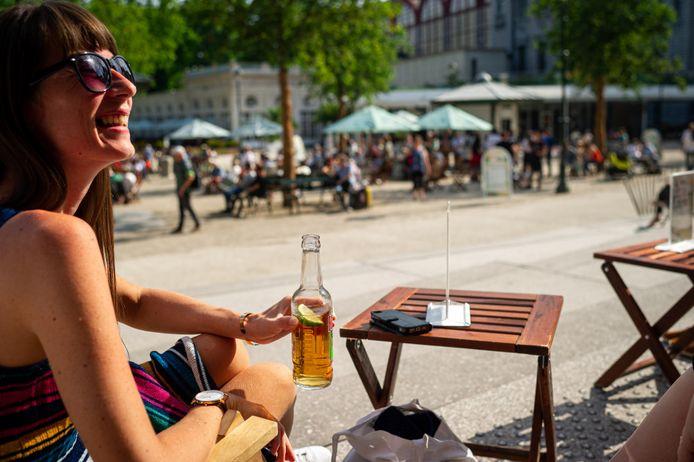 In de ZOOmerbar van ZOO Antwerpen geniet je van een drankje met zicht op de flamingo's.