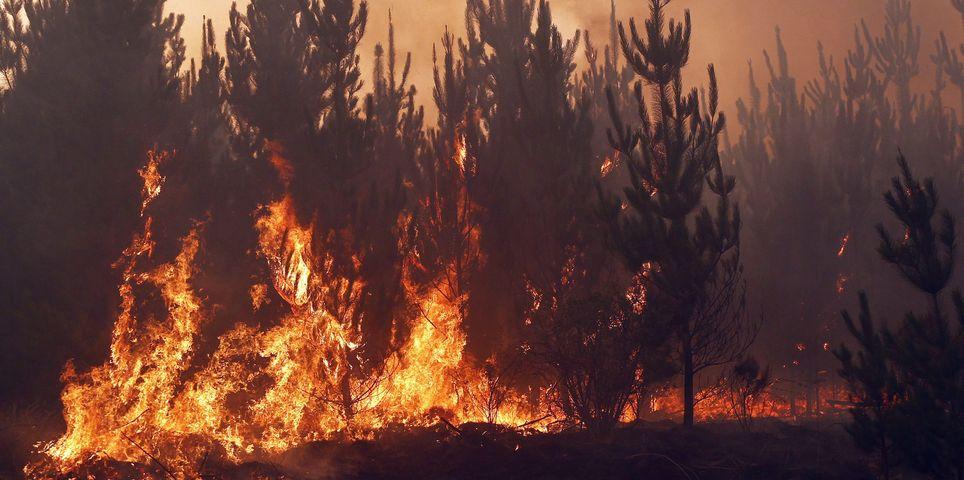 fotoreeks over Bosbranden vernielen 130.000 hectare land in Chili