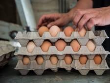 Boos op de overheid: eierboeren delen gratis eieren uit