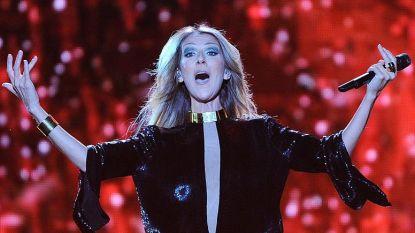 Céline Dion danst als een bezetene bij concert Lady Gaga
