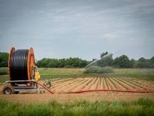 'Rechtbank bracht honderden boeren in Peel in onzekerheid'