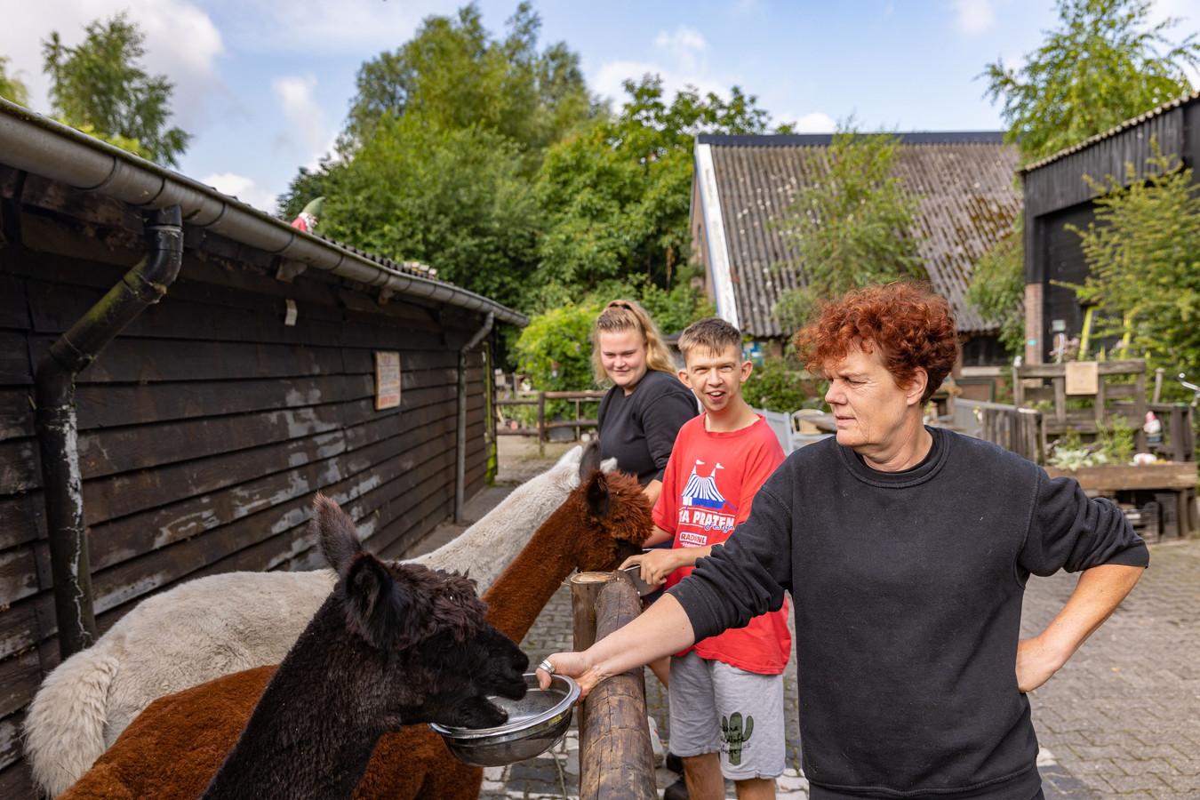 Teun's Hoeve is een zorgboerderij en boerencamping in het buitengebied van Balkbrug. Dit weekeinde houden ze een open dag, om meer bekendheid te krijgen. Dat is ook wel nodig, want de locatie is allesbehalve prettig gelegen, nadat een weg is afgesloten. Eigenaresse Sandra van Munster (voorgrond), hulpboer Pim van den Brink en begeleidster Ilse Zomer merken dat spontane aanloop afneemt.