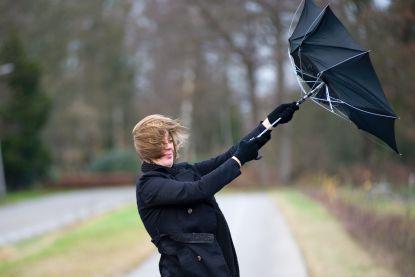 Code geel tot 9 uur: lokaal mogelijk windstoten tot 100 km/u
