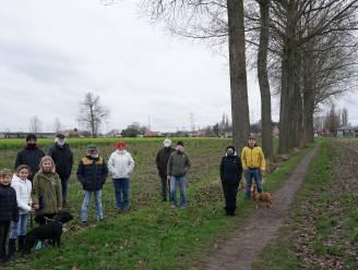 Bewoners halen hun slag thuis: geen vergunning voor rooien van bomen