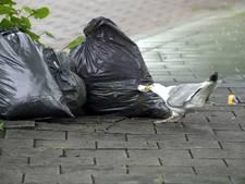 Boete voor Apeldoornse vuilniszak terecht