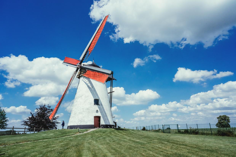 Dankzij kersvers molenaar Bernadette Dingenen draait molen Ter Hengst in Ronse weer.  Beeld Stefaan Temmerman