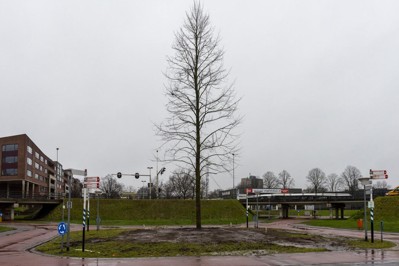 Eerder dit jaar werd al - in het midden van de rotonde aan de Smelen - een linde geplaatst ter ere van 100 jaar Veldhoven. De voorstelling in de Schalm gaat toch door, om het eeuwfeest op een andere manier te vieren.