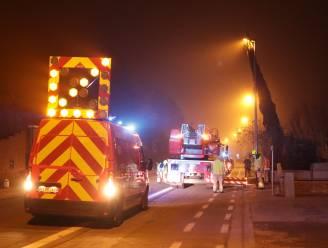 Brandweer rooit boom die verlichtingspaal dreigt te beschadigen